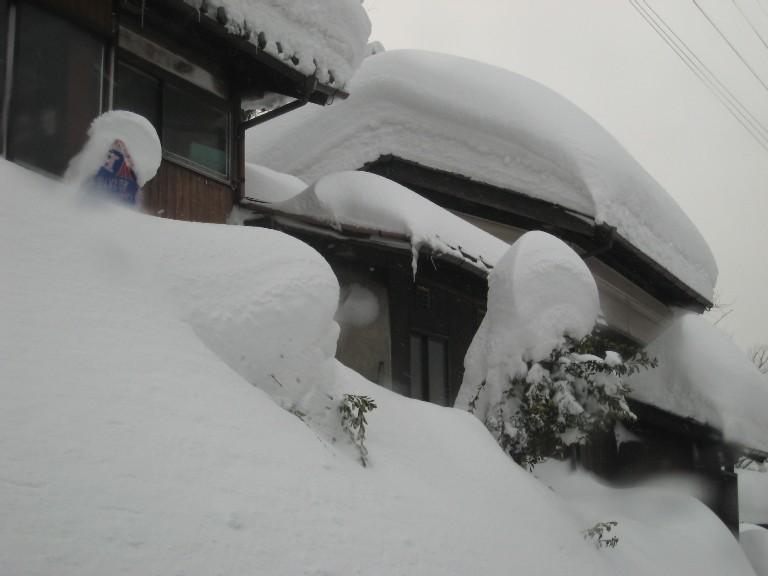 080217kunizakai2.JPG