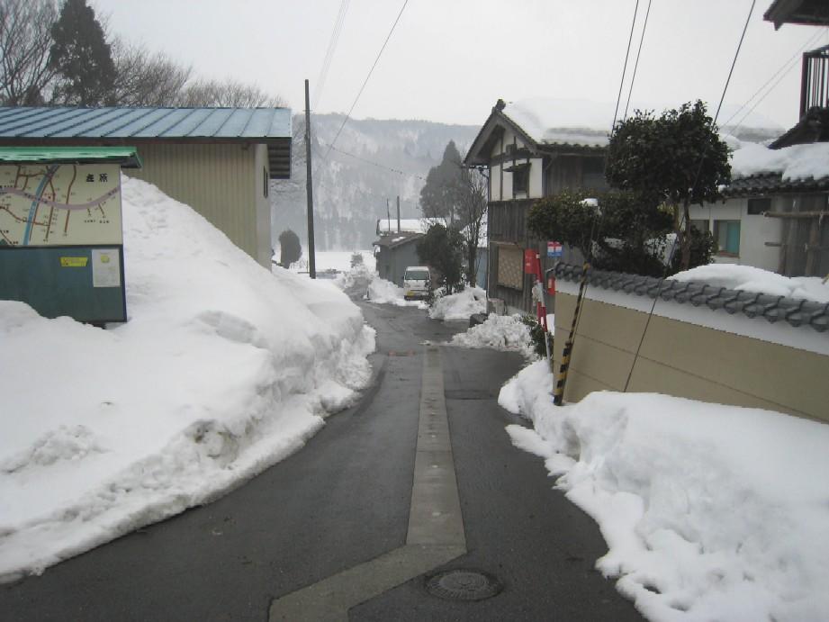 080301arihara1.JPG