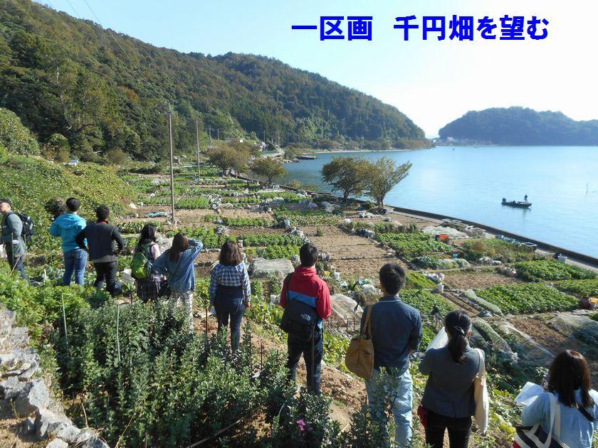 141019okishima7