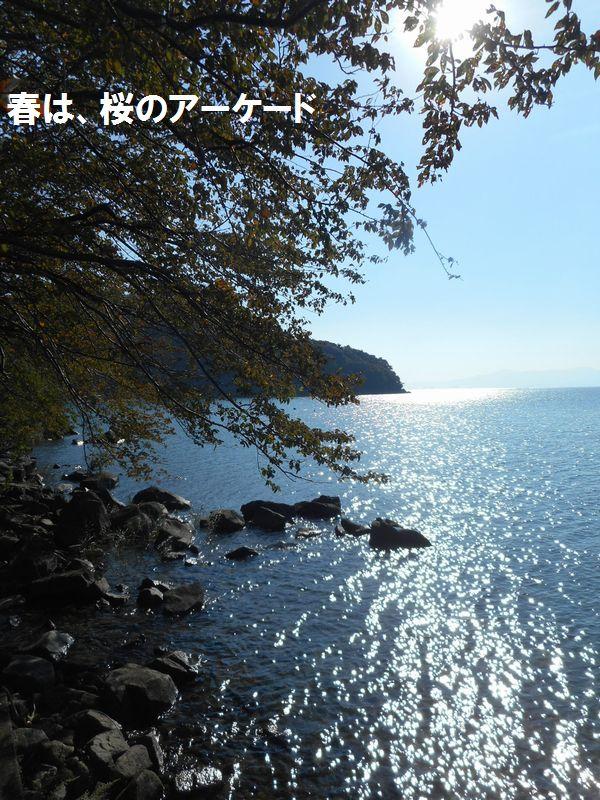 141019okishima8
